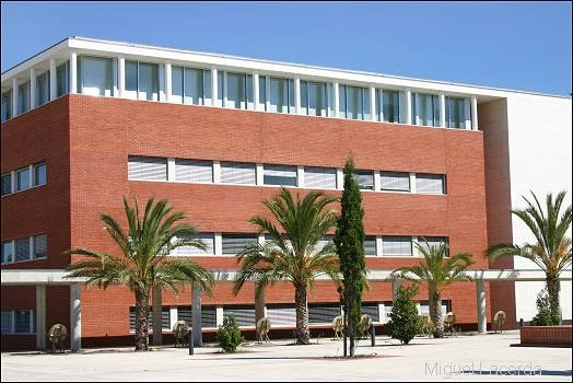 university of aveiro